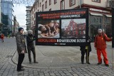 Zdjęcia martwych płodów na Świdnickiej. Pikietowali przeciwnicy aborcji