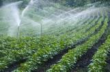 Nawadnianie gospodarstw. Rusza cykl szkoleń online dla rolników. Eksperci przez internet pomogą wypełnić wnioski