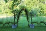 Konstrukcje ogrodowe z wierzby. Zobacz, jak zrobić altanę, płotek, tunel itp.