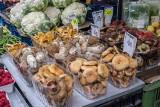 Ceny grzybów na poznańskich targowiskach. Zobacz ile musisz zapłacić za kurki, borowiki i podgrzybki