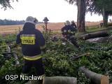 Wichura między Polanowem a Bobolicami. Połamane drzewa i zerwane dachy ZDJĘCIA