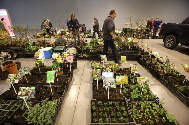 Targi Sibex w Expo Silesia. Zainspiruj się pomysłami na nowoczesny dom i ogród