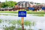 Stan ostrzegawczy na Odrze w Cigacicach. Przez wysoki poziom wody nie kursują przeprawy promowe w lubuskich miejscowościach