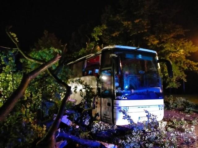 Silne wiatry znowu pokazały swoją siłę w powiecie puckim. Strażacy m.in. usuwali skutki przewrócenia się drzewa na autobus.