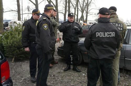 Jak co roku w okresie Świąt Bożego Narodzenia koszalińscy policjanci wraz z funkcjonariuszami Straży Miejskiej i Straży Leśnej podejmują działania na rzecz ograniczenia kradzieży choinek z lasu.
