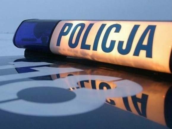 Rozpoczyna się policyjna kontrola pojazdów wiozących dzieci na ferie.
