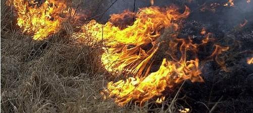 Mężczyzna wypalał trawę. Na razie nie wiadomo jaka była przyczyna zgonu.