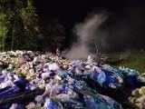 Dzikie składowiska odpadów w powiecie chełmińskim - w tle pożar i wyrok więzienia