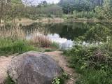 Zielona Góra ma jezioro? Oczywiście, to magiczne miejsce. Jedni chcą tutaj zmian, inni przeciwnie. Uważają, że Glinianka jest okej