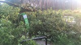 Zielona Góra po nawałnicy. Tak wygląda ścieżka rowerowa prowadząca do Ochli