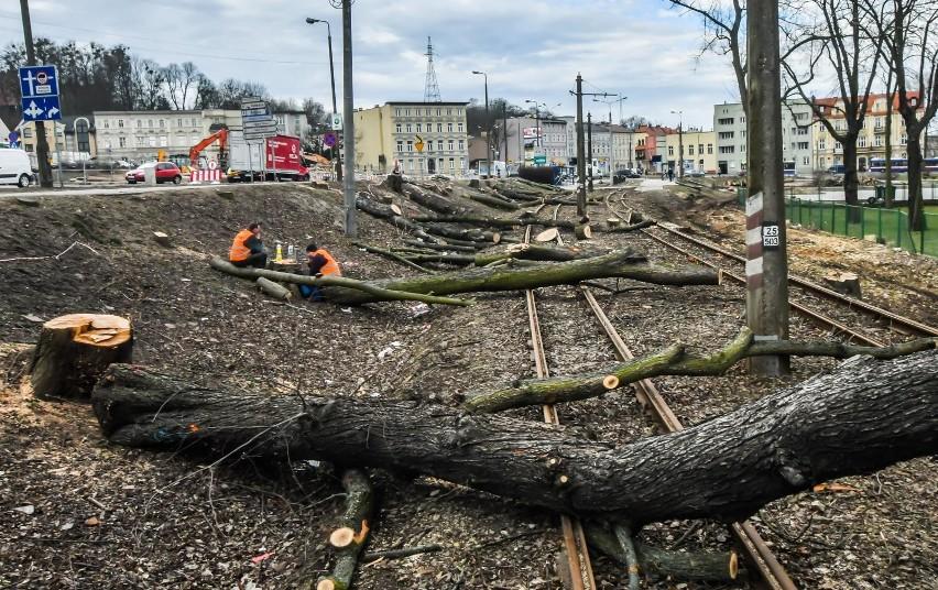 Trwa wycinka drzew przy ulicy Toruńskiej, obok ronda...