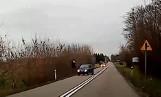 Dachowanie po zderzeniu z jeleniem na drodze DW 716 koło Piotrkowa. Film z wypadku. Zderzenie samochodu z jeleniem. Informacje 22.12.2019