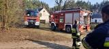 Powiat ostrołęcki. Strażacy wiele razy wyjeżdżali do pożarów traw. 29.03.2020