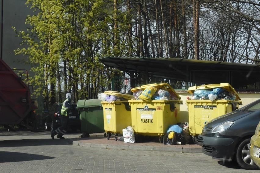 Zastanawiasz się, gdzie wyrzucić dane odpady? Zakład Gospodarki Komunalnej w Zielonej Górze przychodzi z pomocą. Właśnie uruchomiono wyszukiwarkę odpadów.