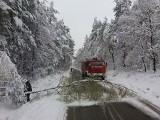Zimowy paraliż w Zawierciu: Wypadki, nie jeżdżą autobusy, brakuje prądu WIDEO + ZDJĘCIA