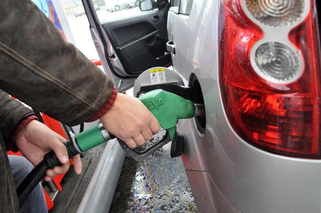 Sprawdziliśmy ceny paliw, a także opłat za drogi w europejskich krajach, które najczęściej wybieramy w czasie wakacji jako cel podróży i do których część z nas wybiera się autem. Na kolejnych stronach znajdziecie informacje dotyczące poszczególnych państw (poszeregowane są alfabetycznie).