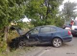 DZ24: Wypadek na DW 794 w Dzwonowicach [ZDJĘCIA]