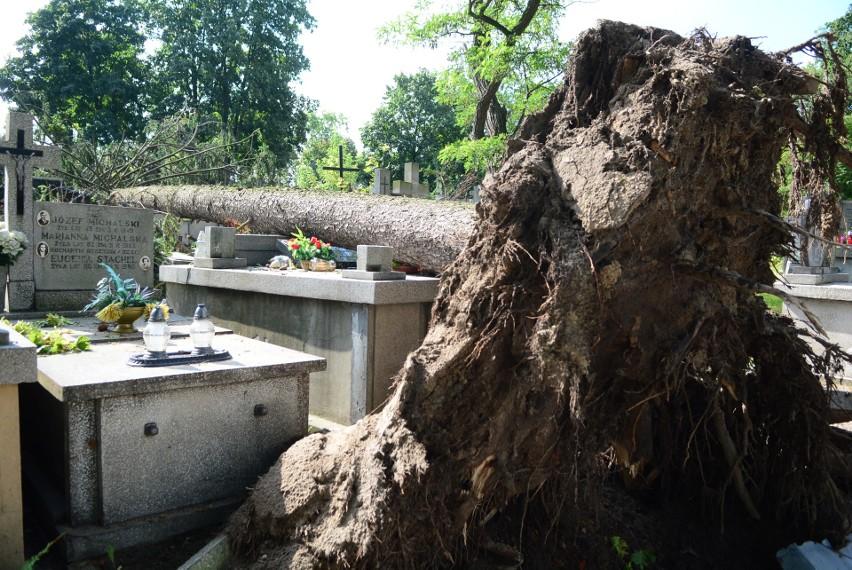 W czwartek od rana trwało usuwanie skutków nawałnicy, jaka spustoszyła radomski cmentarz przy ulicy Limanowskiego w Radomiu. Ekipa pracowników ścinała powalone konary i drzewa, porządkowała aleje cmentarne, usuwała pnie drzew powalone na groby.