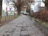 Poznań: Droga rowerowa przy Grunwaldzkiej jeszcze w tym roku wydłuży się o nowy odcinek - między ul. Jugosłowiańską a rondem Skubiszewskiego