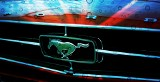 Niespodziewany finał historii skradzionego auta. Mustang wart 65 tysięcy stał... przy A1