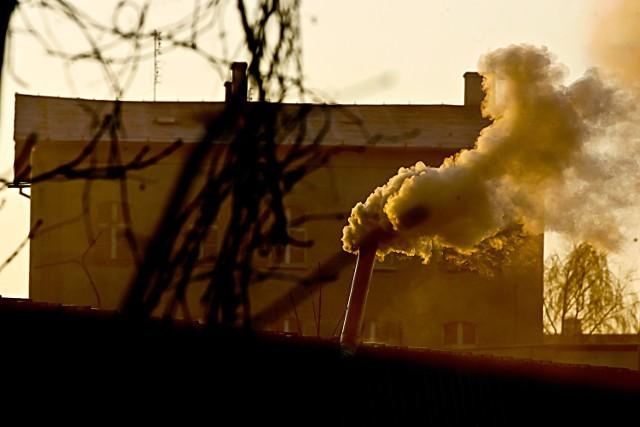 Na kontakt z powietrzem, w którym przekroczone są normy stężenia pyłu, narażone jest w woj. łódzkim aż 984 tys. osób