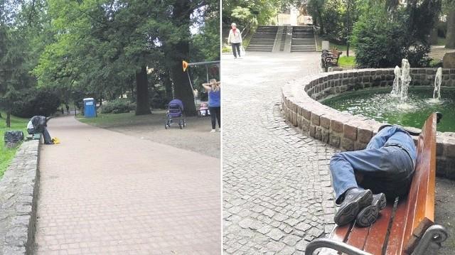 Jedna nasza wizyta w Parku Chrobrego zaowocowała dwoma takimi zdjęciami.