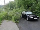 Skomielna Czarna. Drzewo runęło na drogę blokując przejazd
