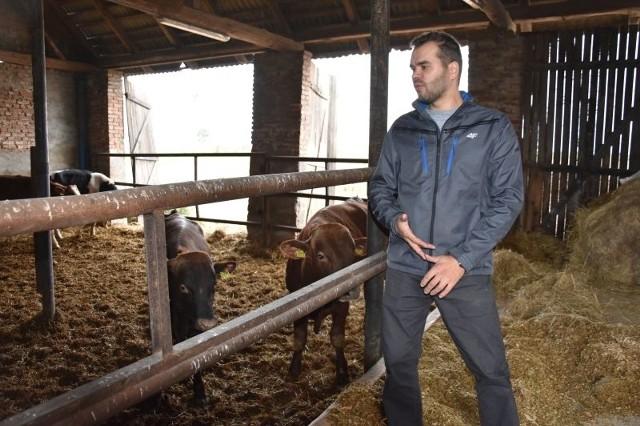 Mateusz Stachowiak starał się nie sprzedawać bydła tuż po aferze