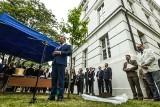 Pół roku temu soczyście zielony, teraz badylek... Co się stało z Dębem Niepodległości w Bydgoszczy?