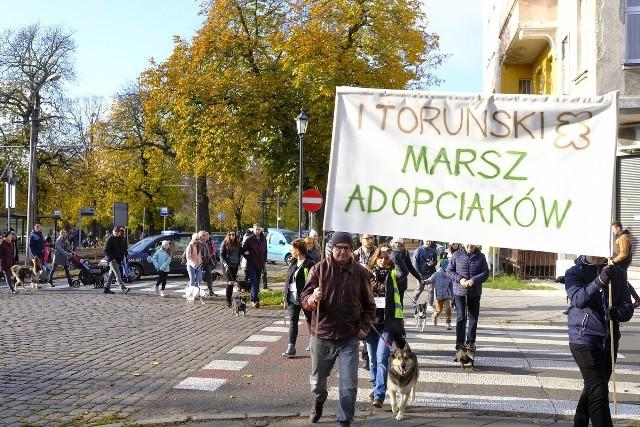W niedzielę (10 listopada) ulicami miasta przeszedł pierwszy Toruński Marsz Adopciaków. Celem wydarzenia była promocja świadomej oraz odpowiedzialnej adopcji bezdomnych zwierząt. Marsz z adoptowanymi czworonogami rozpoczął się w Parku na Bydgoskim Przedmieściu, a zakończył na starówce - pod pomnikiem Mikołaja Kopernika. Rozstrzygnięty został tam konkurs na wybór psów o najciekawszej urodzie. Rozegrano go w trzech kategoriach: najśmieszniejsze uszy, najbardziej oryginalna uroda i najciekawsze uzębienie.