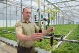 Strefa Agro. Największa w Europie szkółka drzew jest w Sukowie koło Kielc