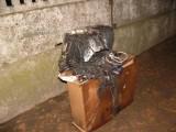 Opalenica: W nocy spłonęło mieszkanie. Pięć osób w szpitalu [ZDJĘCIA]