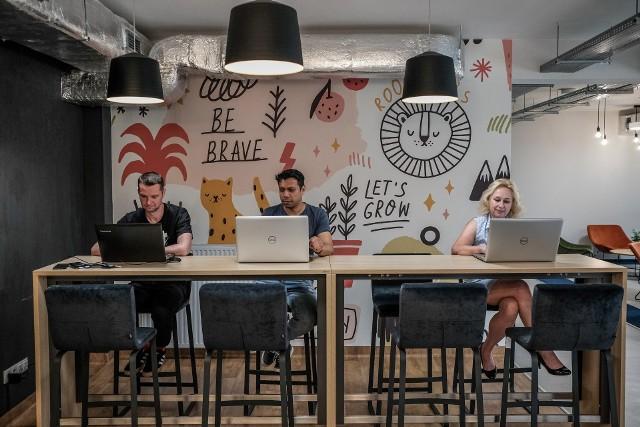 InQUBE przy Uniwersytecie Ekonomicznym we Wrocławiu pomaga przyszłym przedsiębiorcom rozwinąć skrzydła