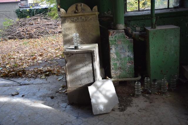 1 listopada to dzień zadumy i spokoju. Czas odwiedzania grobu bliskich. W Zielonej Górze jest jednak taki cmentarz, o którym zdaje się pamiętać niewielu. To dawny żydowski kirkut, znajdujący się w okolicy ul. Wrocławskiej. Ten z każdym miesiącem jest w coraz gorszym stanie. 1 listopada przez ulicę Wrocławską przechodzą tłumy mieszkańców. W torbach niosą znicze, kwiaty. W końcu to przy tej ulicy znajduje się największa nekropolia w mieście. Jednak większość spieszących na cmentarz nie zatrzymuje się w połowie drogi. A przecież przy ul. Wrocławskiej znajduje się jeszcze jedno miejsce, gdzie pochowani są dawni mieszkańcy miasta. To dawny kirkut żydowski, na terenie którego znajduje się i kaplica przedpogrzebowa. Mało kto jednak wie o tym miejscu. Ktoś tylko wjeżdża na teren dawnego kirkutu, by zaparkować samochód. - Swoją drogą, co tu się znajduje? - pyta kierowca towarzyszącą mu kobietę. - Dawny cmentarz żydowski - wtrącamy się do rozmowy. - Tutaj? Niemożliwe - odpowiada mężczyzna. I razem z nami wchodzi do budynku, gdzie leżą macewy. No właśnie. Bo kaplica przedpogrzebowa, nie wiadomo dlaczego, otwarta jest na oścież. Nie ma już kłódki, która ochraniała wejście. W środku? Zniszczone macewy, mnóstwo liści, opakowania po jedzeniu. Ktoś postawił znicz. Przez wybite okna stan posadzki i nagrobków jest w fatalnym stanie. Choć na wielu wciąż można przeczytać inskrypcje chociażby w języku niemieckim. Obecnie kirkut podlega warszawskiej Fundacji Ochrony Dziedzictwa Żydowskiego. Jej przedstawiciele informowali nas, że fundacja dysponuje dokumentacją projektową, która jest niezbędna, by przeprowadzić renowację cmentarza żydowskiego w Zielonej Górze. - To pierwszy krok zmierzający do zmiany obecnego stanu rzeczy - informowano nas. - Kolejnym jest wycena i pozyskanie środków, a następnym – przeprowadzenie prac. Te miałyby się odbyć w tym roku. Jednak mijają miesiące, a cmentarz jest w coraz gorszym stanie. Cyklicznie starają się go sprzątać mieszkańcy, w tym Młodzieżowa Rada Mia
