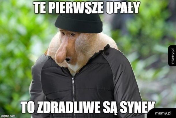 Fala upałów nad Polską. Jak sobie z nią radzić? Zobacz co myślą o tym internauci. Memy o upałach podbijają internet