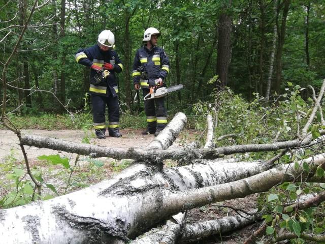 """Strażacy z OSP Połczyn-Zdrój cały czas ciężko pracują przy usuwaniu skutków burzy, która w sobotę wieczorem przeszła nad  regionem. To kolejne zdjęcia, które strażacy zamieścili na swoim profilu facebookowym. Mieszkańcy regionu nie szczędzą pochwał dla ich zaangażowania: """"Dziekujemy, jesteście wspaniali"""", """"Szacun dla strażaków ciężką noc mieli i to nie koniec"""" - to komentarz wpisywane na profilu. Więcej przeczytasz TUTAJ > Burza w powiecie świdwińskim. Pokazujemy relację strażaków"""