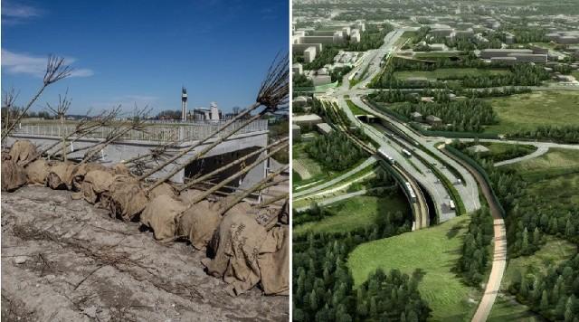 W ramach budowy Trasy Łagiewnickiej obecnie wykonywane są m.in. nasadzenia drzew i krzewów nad tunelem między sanktuariami Bożego Miłosierdzia i św. Jana Pawła II. Tam zaplanowano obszar parkowy.