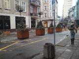 GORZÓW WLKP. Na ul. Hawelańskiej pojawiły się wielkie donice z drzewkami. Powód? Wyznaczają miejsca, w których parkować nie można [ZDJĘCIA]