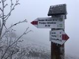 W Bieszczadach wszystkie szlaki są już dostępne dla turystów