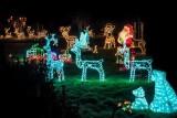 Czekamy na Wasze zdjęcia iluminacji świątecznych. Stworzymy galerię z powiatu sandomierskiego