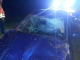 Pijana kierująca dachowała na DK 12. Do wypadku doszło między Piotrkowem a Opocznem [ZDJĘCIA]