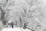 Prognoza pogody na sobotę. Uwaga śnieg! Pogoda na weekend od 30 stycznia. Prognoza pogody na sobotę. OSTRZEŻENIE METEOROLOGICZNE 30.01.2021