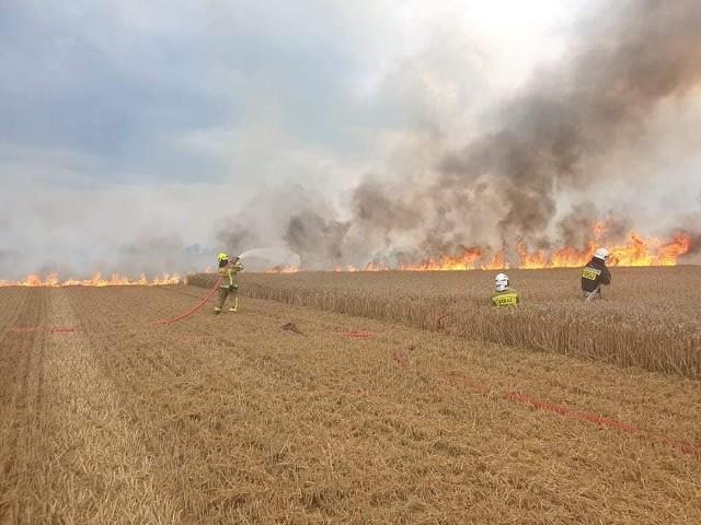 Pożar zboża w Stablewicach w gminie Unisław