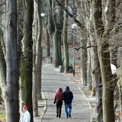4,5 mln zł - tyle ma kosztować droga, która przetnie Park Piastowski i połączy ul. Botaniczną z Wyszyńskiego.
