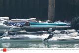 Coraz więcej nielegalnych imigrantów dociera do Wielkiej Brytanii. Przemytnicy wysyłają ich łodziami przez kanał La Manche