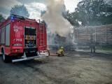 Pożar naczepy z drewnem w Praszce. Ogień gasiły trzy zastępy strażaków