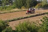 Do wzięcia premia 150 tysięcy złotych! Tylko dla młodych rolników! Już będzie można składać wnioski
