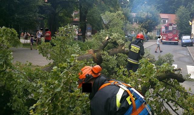W Pleszewie drzewo przewróciło się na  budynek mieszkalny. W  Wielkopolsce strażacy odnotowali 7 przypadków upadków drzew  na budynki. Konary spadły i uszkodziły 6 pojazdów
