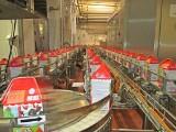 Pierwszy mleczarski sklep internetowy w Polsce. Otworzyła go spółdzielnia ROTR z Rypina
