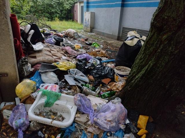 Śmieci przy pergoli na skrzyżowaniu ul. Dolnej i Zakręt w Zielonej Górze